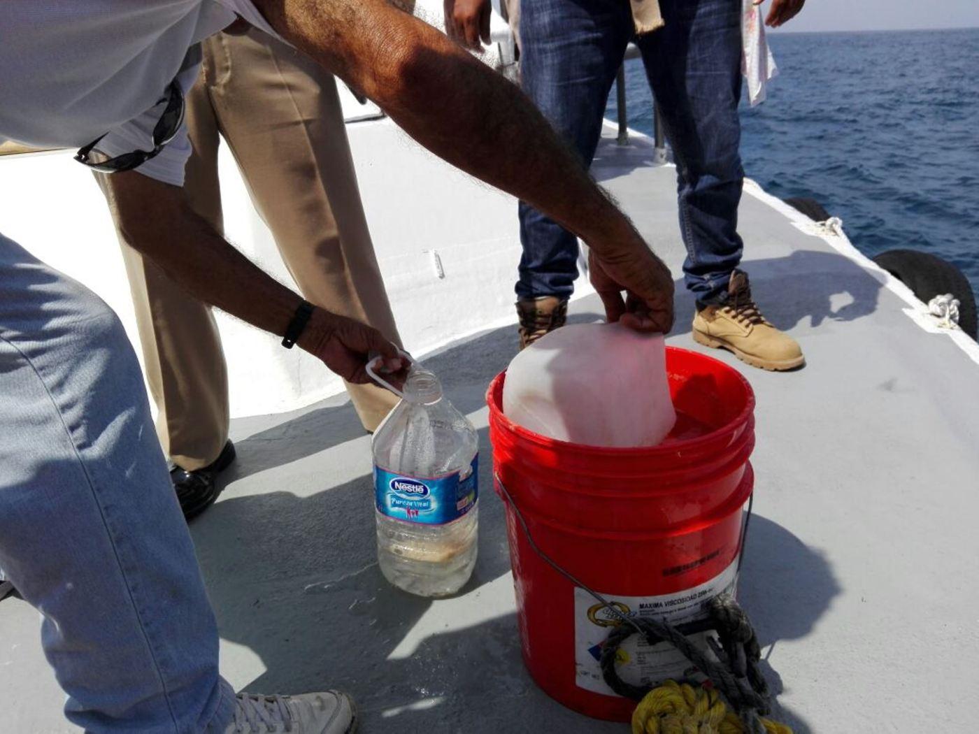 Personal de la Profepa toma muestras en aguas que rodean el buque Los Llanitos