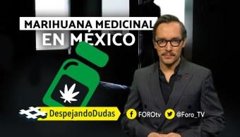 Marihuana Medicinal en México, Despejando Dudas, genaro lozano