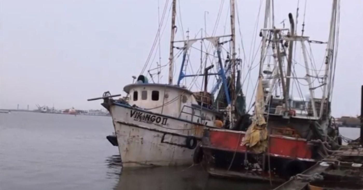 la embarcacion vikingo ii a flote