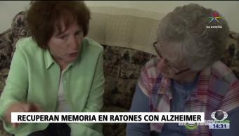Científicos logran avances contra el Alzheimer