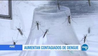 Aumentan afectaciones por dengue en Perú