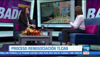 Luz Maria Mora Renegociacion Tlcan Especialista Del Cide