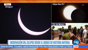 Observación Eclipse Museo Historia Natural