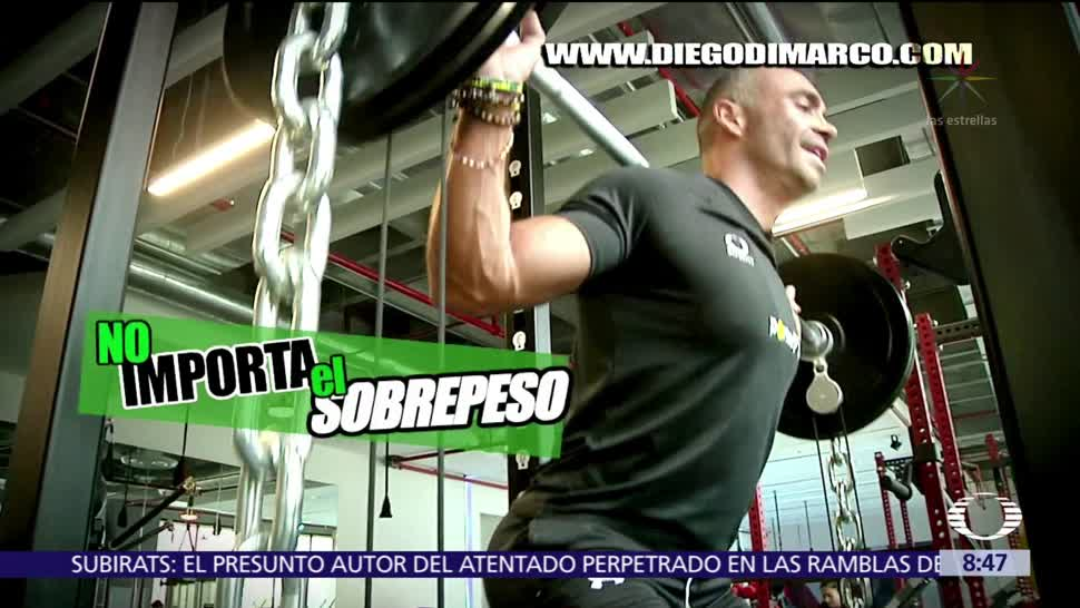 Ponte, Fit, músculo, grasa