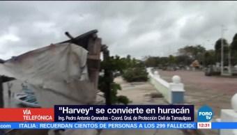 Tamaulipas, encuentra, alerta, huracán
