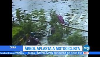 Árbol, aplasta , motociclista, China