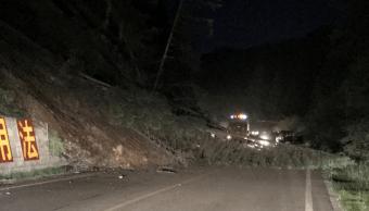 Árbol caído tras sismo en China