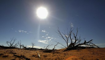 NOAA confirma que 2016 fue ano mas calido Tierra