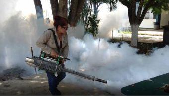 campeche salud mosquito dengue zika chikungunya
