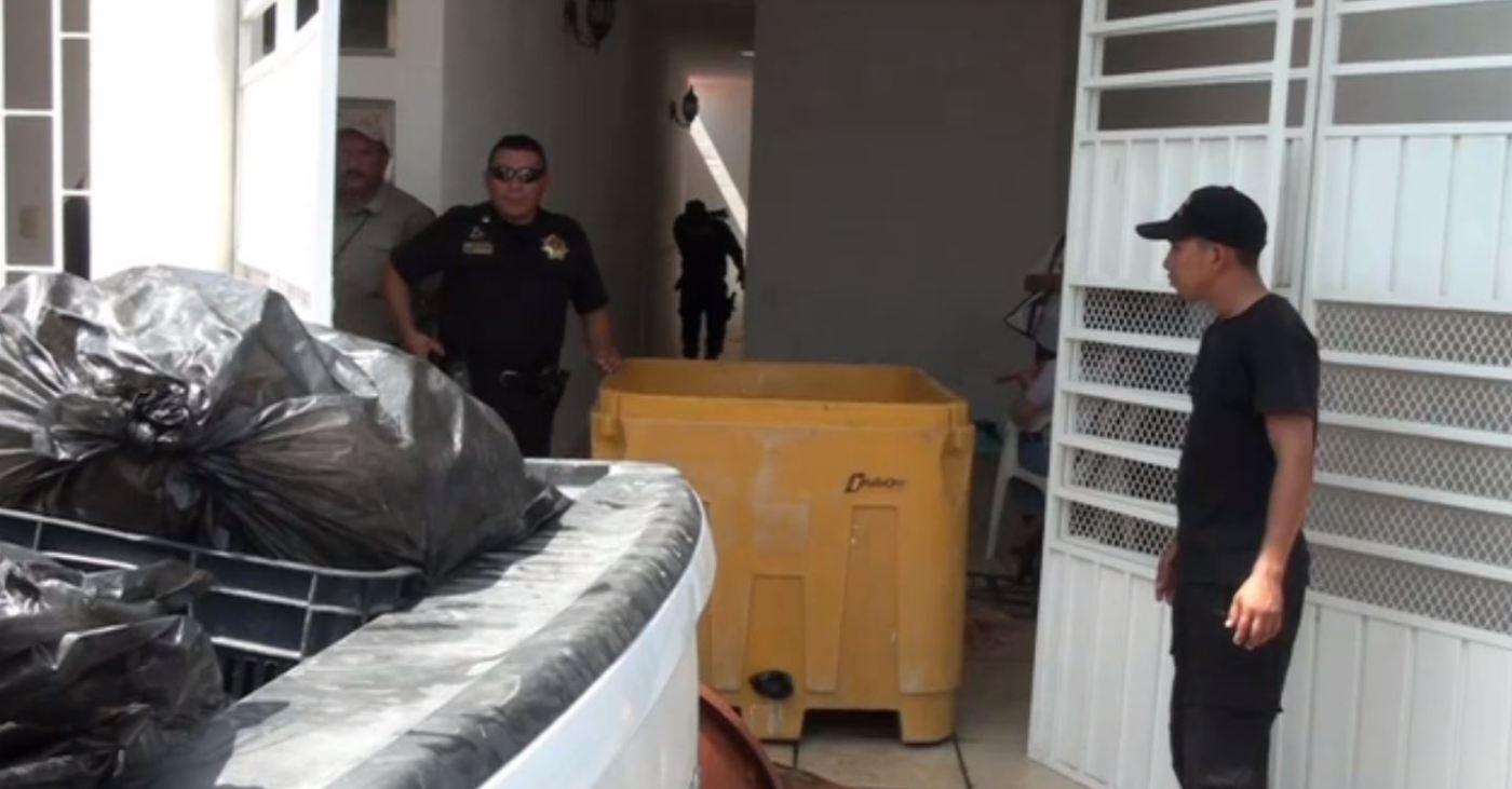Decomisan más de 3 toneladas de pulpo en Campeche