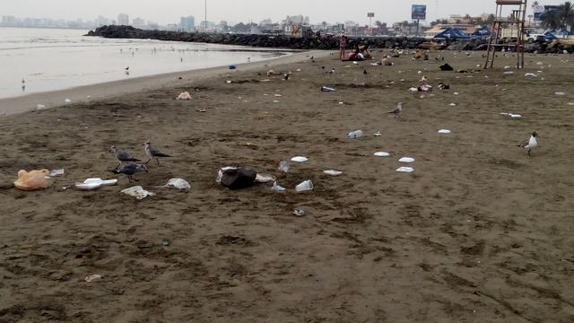 Drones monitorearán playas mexicanas para clasificar residuos. (Conacyt Prensa)