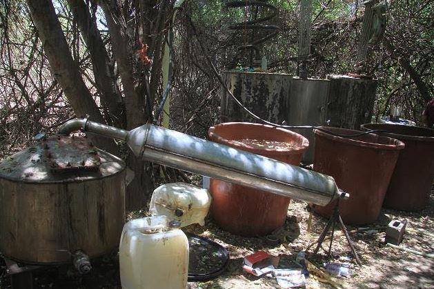 Autoridades en Sinaloa desmantelan laboratorio clandestino
