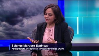 Participación ciudadana ayuda a mejor la calidad del aire: especialista