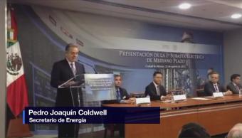 Pedro Joaquín Coldwell, presenta, subasta, eléctrica