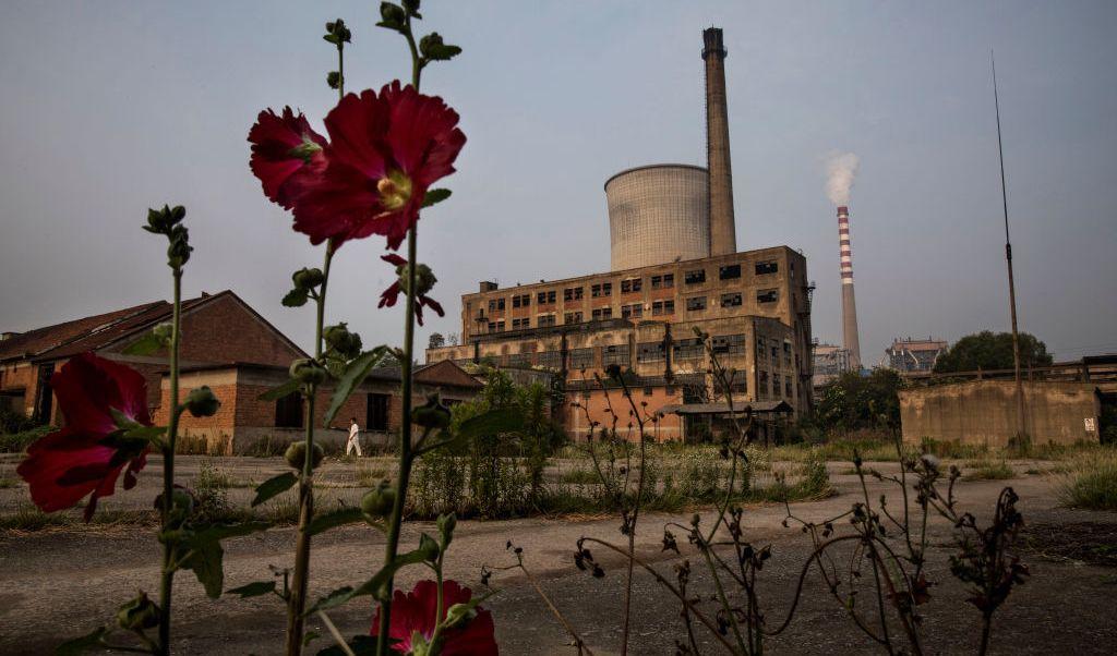 China, fábrica, flor, recursos, renovables, Planeta, Tierra