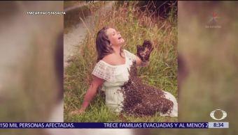 Embarazada, fotografía, rodeada, abejas