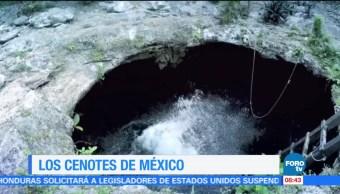 Los, cenotes, de, México