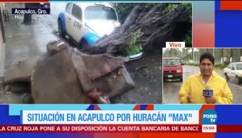 Max provoca caída de árboles en Acapulco