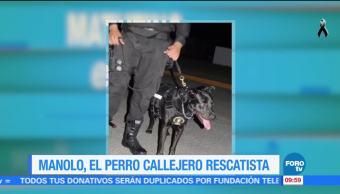 Extra, Extra: Manolo, el perro callejero rescatista