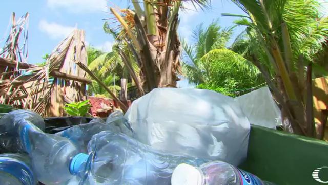 Holbox y Tulum Quintana Roo están amenazadas por contaminación