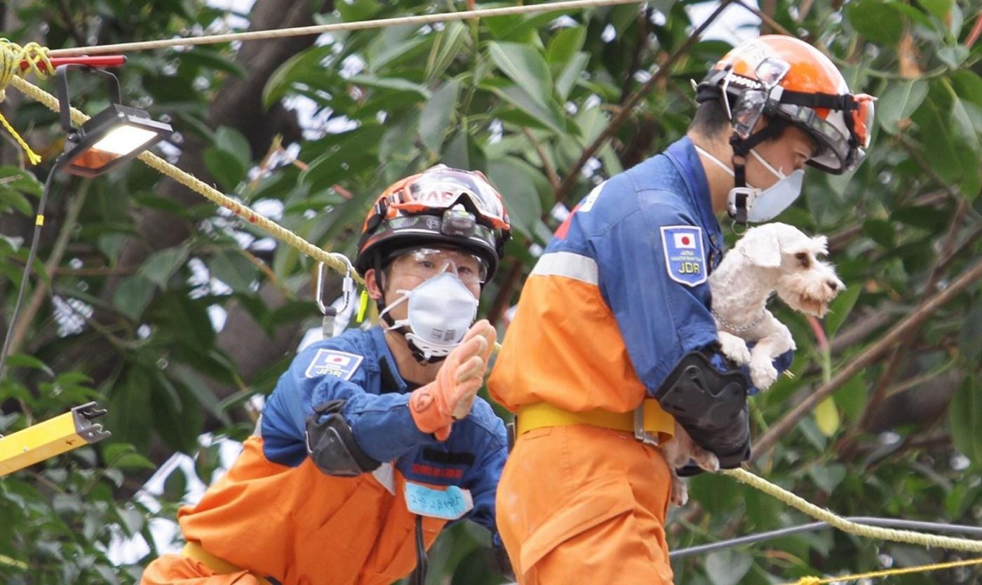 brigadas de rescatistas de japón