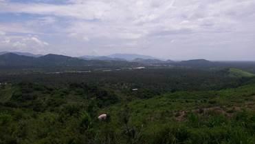 avioneta desaparecio sierra guerrero zihuatanejo acapulco