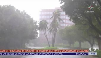 Irma, muertos, paso, Florida