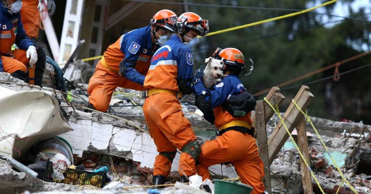 Después de los trabajos de rescate, rescatistas japoneses se despiden