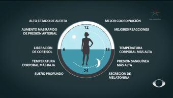 Dan Nobel a descubridores del 'Reloj Biológico'