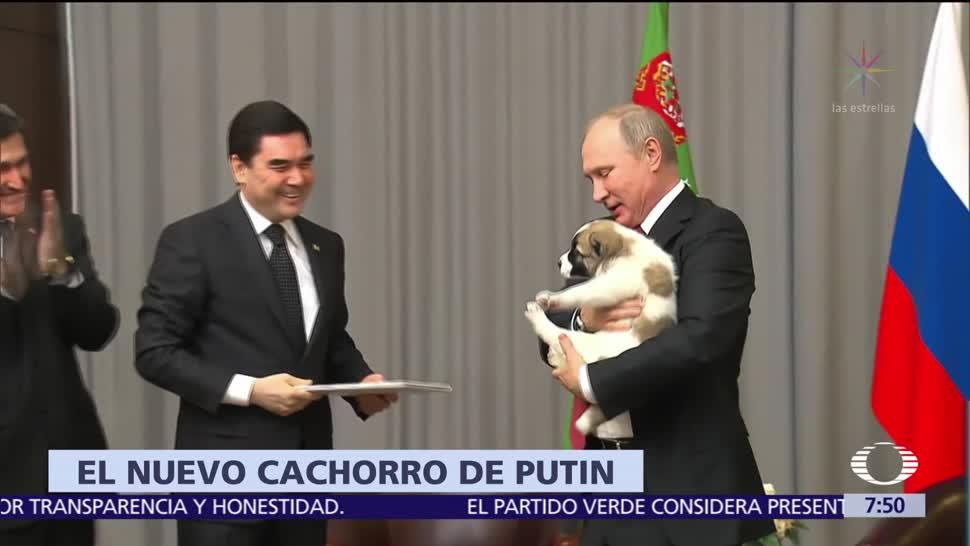 Presidente de Turkmenistán regala perro cachorro a Putin por su cumpleaños