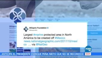 Leonardo DiCaprio agradece a EPN esfuerzos para proteger océanos