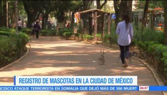 Extra, Extra: Registro de mascotas en la Ciudad de México