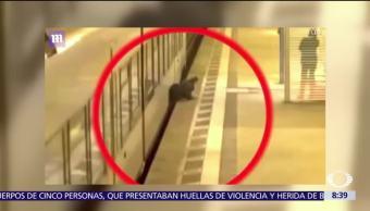 Hombre se salva de morir atropellado por un tren en Alemania