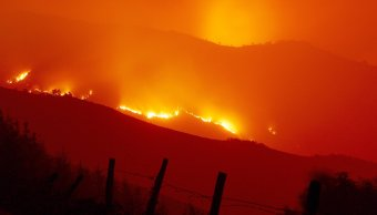 suman 40 muertos incendios portugal espana