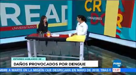 Conoce Enfermedades Transmiten Mosquitos Doctora Guadalupe Soto Estrada Unam