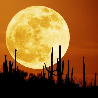 ¿Realmente la luna de octubre es la más bella del año?