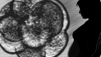 Imagen de un embrión junto a una mujer embarazada