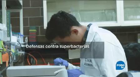 Resistencia Bacterias Antibióticos Multidrogoresistentes