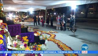 Arman ofrendas de Día de Muertos en edificios colapsados por el sismo