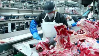 Alerta disfrazan carne de caballo como carne de res