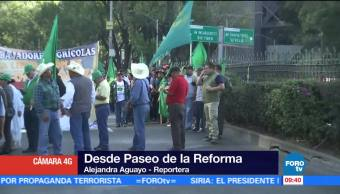 Manifestantes afectan la vialidad en Paseo de la Reforma, CDMX