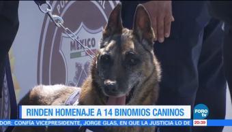 Policía Federal jubila a 14 binomios caninos