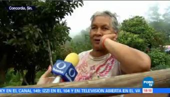 Desplazados Violencia Regresan Concordia Sinaloa