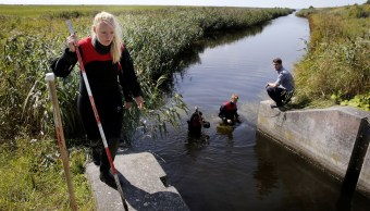 Dinamarca halla más partes del cuerpo mutilado de periodista sueca