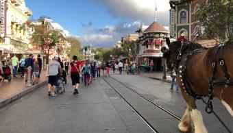Disneylandia clausura torres donde halló bacteria legionela