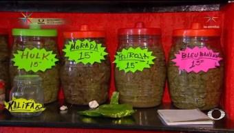 catean tiendita marihuana sabores tepito cinco detenidos