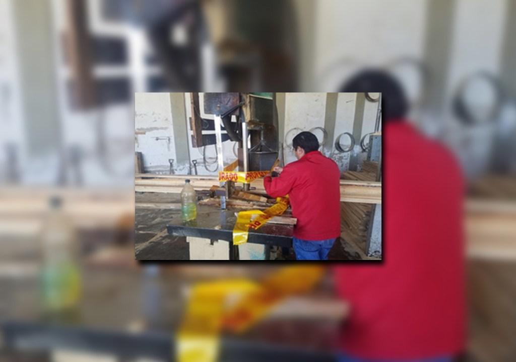 Profepa clausura una maderería en Zapopan, Jalisco