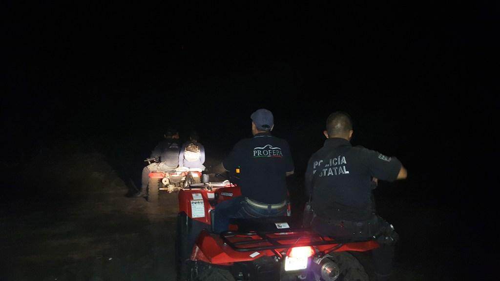 Realiza Profepa 8 operativos en Colima para la protección de tortugas marinas