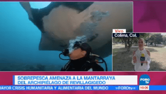 Sobrepesca Amenaza Mantarraya Archipielago Revillagigedo