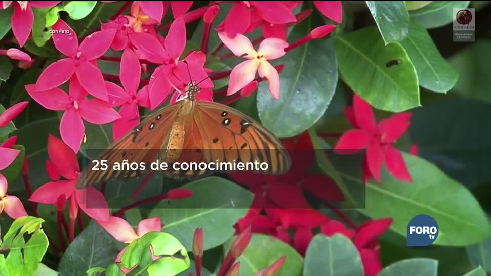 Conabio un referente de la biodiversidad de México